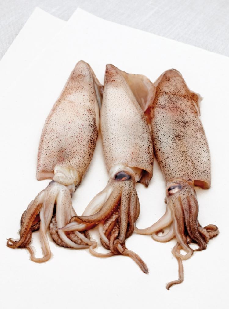 Gestoomde pijlinktvis gevuld met couscous
