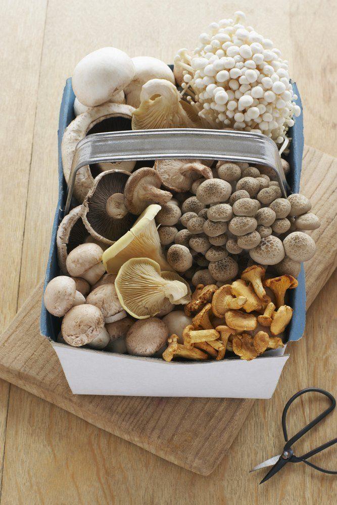 Magic mushroom toast