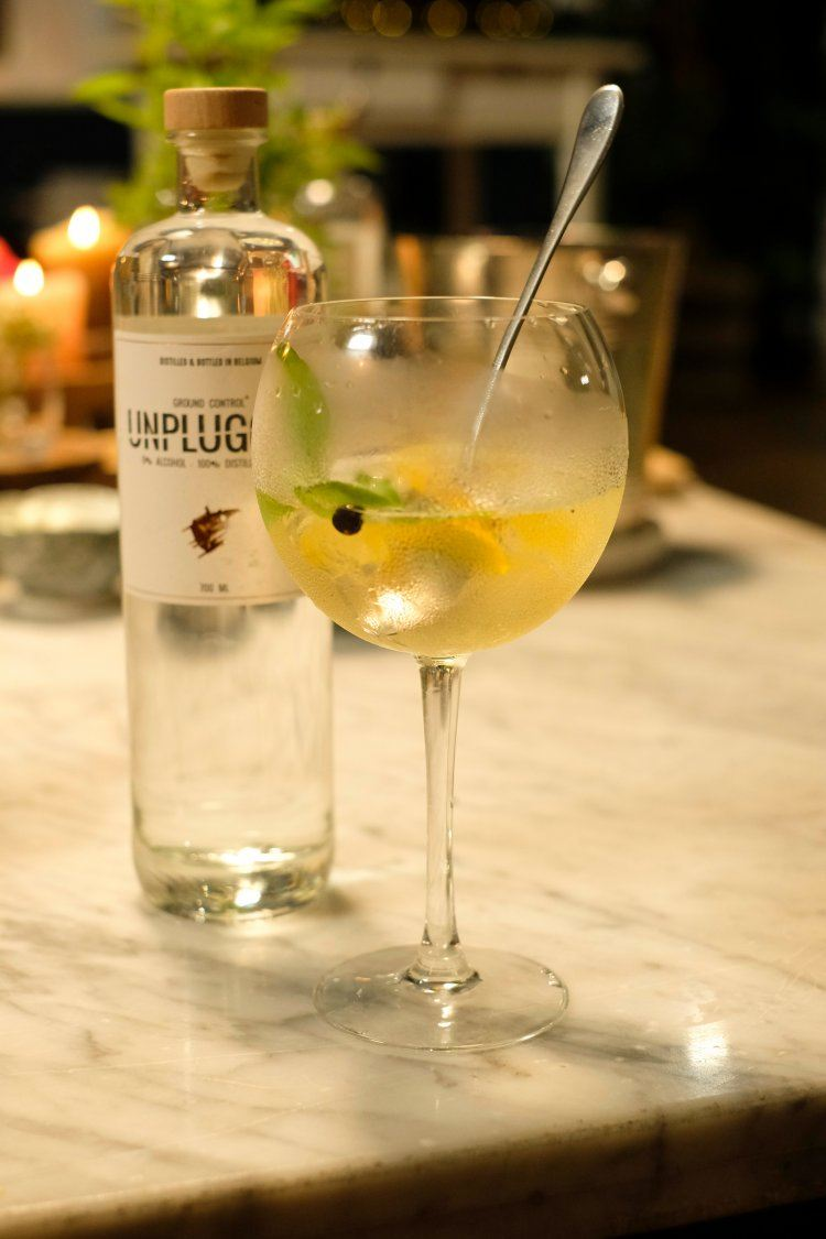 Alcoholvrije gin & tonic